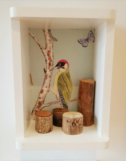 an illustration of a woodpecker and butterfly decorates the inside of a cube shelf