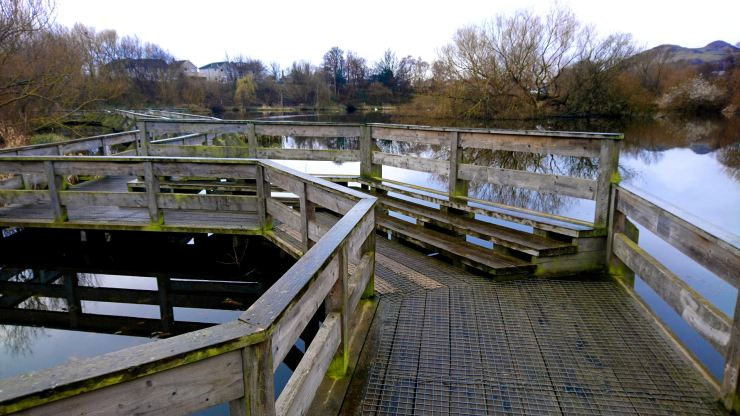 Figgate Park, Edinburgh. A wooden boardwalk goes over a lake surrounded by trees