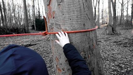 a child ties a rope around a tree