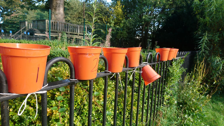 plant pots on a fence